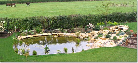 Ponds And Water Features Garden Design Gloucestershire Stroud Bristol