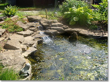 Ponds and water features Garden design Gloucestershire Stroud